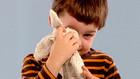 Vorschaubild 'Händchen redet mit Bo über das Alter seines Kuscheltieres'