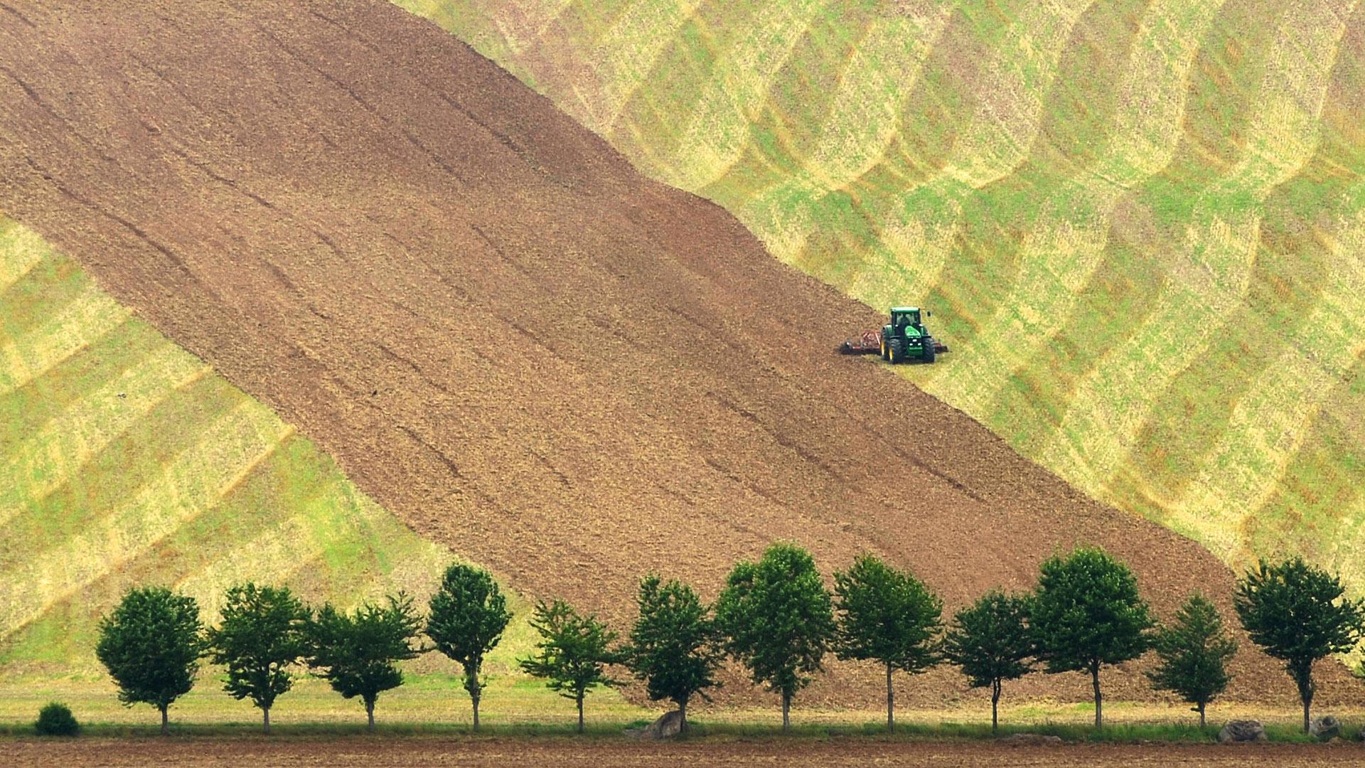 Felder mit Traktor