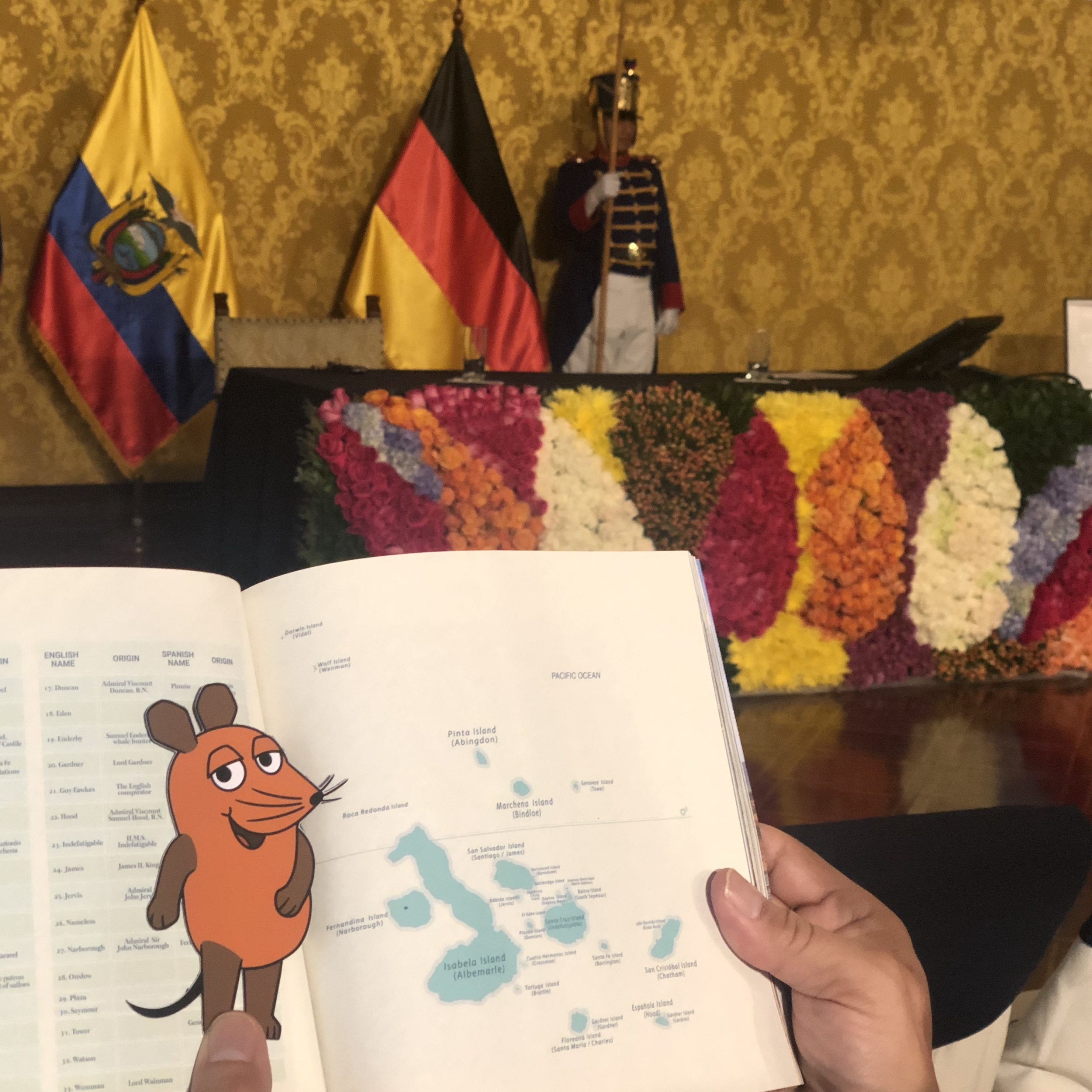 Die Maus schaut sich eine Karte der Galapagos Inseln an