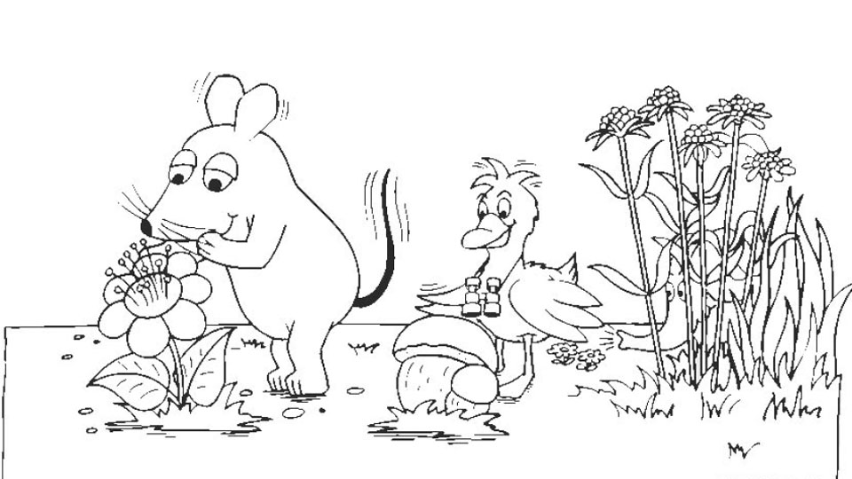 Maus Elefant Und Ente Auf Wiese Die Seite Mit Der Maus Wdr